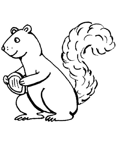 ausmalbilder eichhörnchen 1  ausmalbilder kostenlos