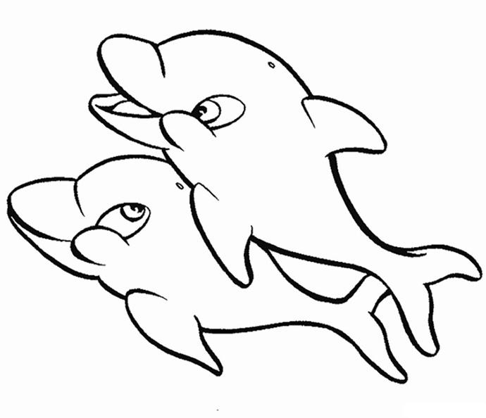ausmalbilder delphin 11  delphin1011